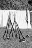 Rifles da guerra civil americana — Foto Stock