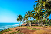 Fisherman hut in the village near the ocean, India — Stock Photo