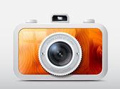 Camera wooden case, vector — Stock Vector