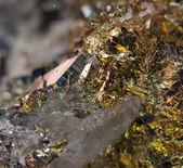 Cristal, ferro, cobre, de pepita, ouro, bronze. macro. extremo perto — Fotografia Stock