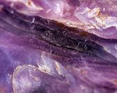Charoite silicate minera, fantastic abstract background. Macro — Stock Photo