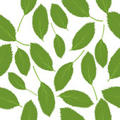 Vector illustration seamless pattern green leaves on white backg — Vettoriale Stock