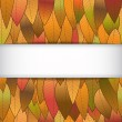 Autumn background from leaves, with a white strip — Stock Vector #50573989