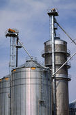 Grain Elevator and Silos — Stock Photo
