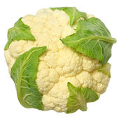 Cauliflower isolated — Stock Photo