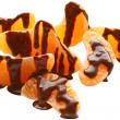 Chocolate covered tangerine heap — Stock Photo