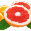 Orange, lemon and grapefruit — Lizenzfreies Foto