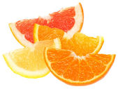 Orange, lemon, grapefruit and tangerine slices. — Stock Photo