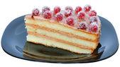 Layered piece of cake close up — Stock Photo
