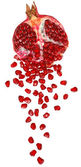 Cut the pomegranate with scattered grain — Stock Photo