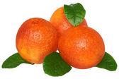 3 個のオレンジの葉を持つ — ストック写真