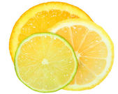 Fresh orange,lime and lemon cut close up — Stock Photo