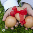 Easter eggs — Stock Photo #22864006