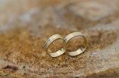 Par de anillos de boda de oro — Foto de Stock