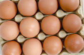 Brown eggs in the basket on a white — Stock Photo