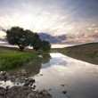 Beautiful summer sunset in the river. — Stock Photo