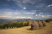 Paisagem bela montanha verde — Fotografia Stock