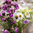 Stock Photo: Bouquet of wild natural flowers