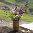 Bouquet of wild natural flowers — Stock Photo