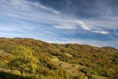 Renkli dağ sahneleri — Stok fotoğraf