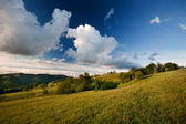 Carpathian mountain — Stock Photo
