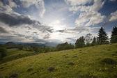 Carpathian mountain — Stock Photo