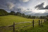 Berg van de karpaten — Stockfoto