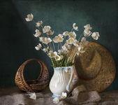 Whit anemones — Stock Photo