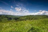 Green mountain valley — Stock Photo