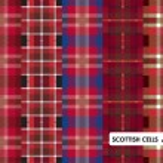 Scottish cells vector set — Stock Vector #19572593