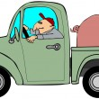 Truck hauling a hog — Stock Photo #14018583