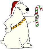 Polar bear holding a candy cane — Stock Photo