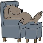 Dog napping in a chair — Stock Photo