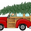 Christmas tree on a woody — Stock Photo