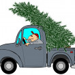 Bringing home the Christmas tree — Stock Photo