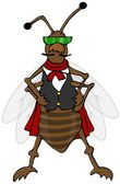 Defiant bug wearing a vest — Stock Photo
