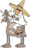 Mexican riding a cow — Zdjęcie stockowe