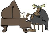 Moose pianist — Stock Photo
