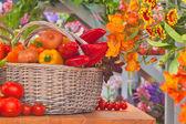 蔬菜和花卉 — 图库照片