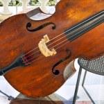 Classic contrabass — Stock Photo