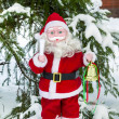 Stock Photo: Doll of SantClaus under tree