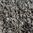 Salted sunflower seeds - Stock Photo