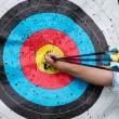 Target for archery with arrows — Stock Photo