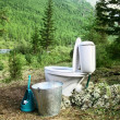 Ceramic new toilet in the woods — Stock Photo