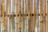 Fence of dry bamboo — Stock Photo