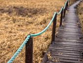 Old wooden walkway — Stock Photo