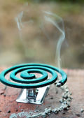 Mosquito coil — Stock Photo