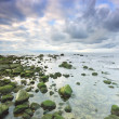 Sea landscape — Stock Photo