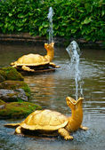 Turtle fountain — Stock Photo