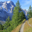 Alpine trail in Ferret Valley — Stock Photo